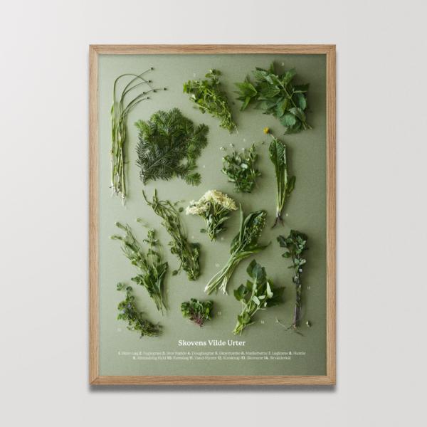 Skovens Vilde Urter plakat Planetarisk kogebog