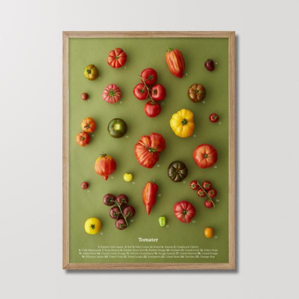Planetarisk Tomat plakat